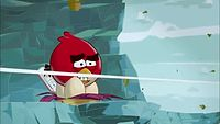 Angry Birds Toons S01E36 Fired Up.mp4