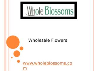 Wholesale Flowers - wholeblossoms (2).pptx