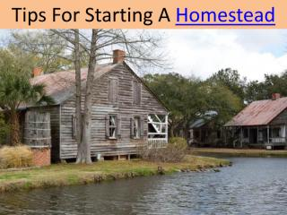 Tips For Starting A Homestead.pdf