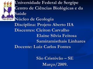 Apresentação do grupo de Elaine.pdf
