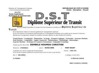 DST_E.doc